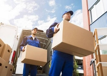 Licensed Movers in Santa Rosa